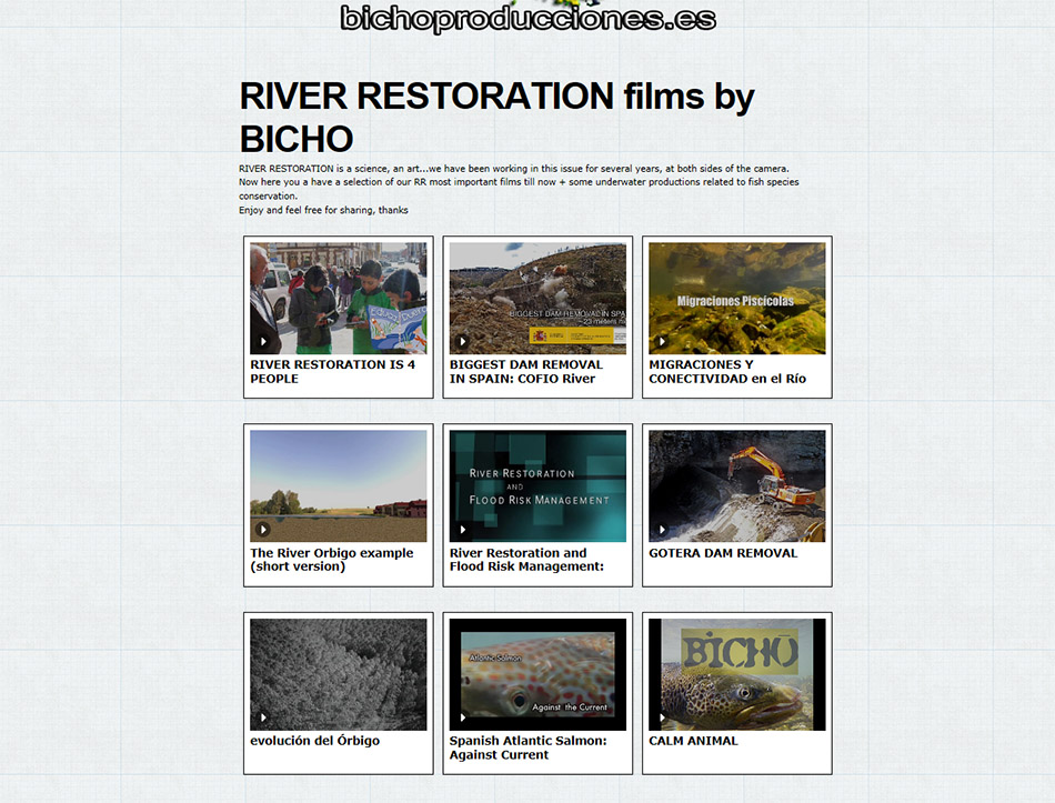 river restoration collection web